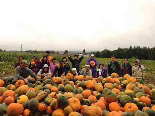 2015-09-19_かぼちゃ収穫祭1_low.jpgのサムネール画像
